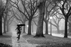 GIRL_IN_RAIN__72dpi_large