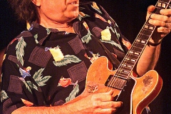 ELVIN_BISHOP_guit_solo_72_large