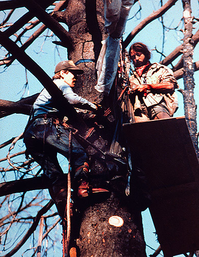 TREE_CLIMBER_ARREST_72dp_large