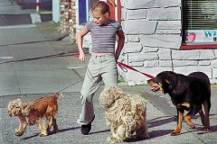 DOG_WALK_72dpi_large
