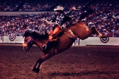 HOUSTON-LIVESTOCK-RODEO-300_large